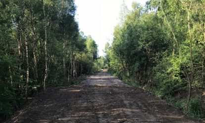 Parks Forests 2